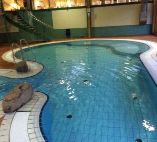 Unteres Becken Familotel Hotel Sonnenhügel
