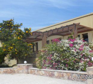 Einfach schön Three Corners Fayrouz Plaza Beach Resort