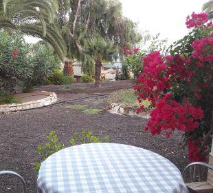 Ausblick von der Zimmer-Terrasse Suitehotel Monte Marina Playa