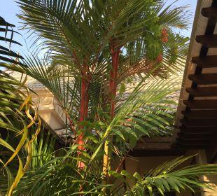 Bambus Hotel Mukdara Beach Villa & Spa Resort