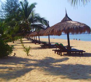 Immer eine freie Liege... C&N Kho Khao Beach Resort