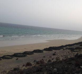 Strand vor dem Hotel Suitehotel Monte Marina Playa