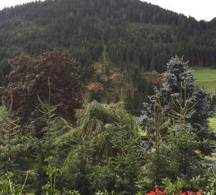 Der Garten Alphotel Tyrol