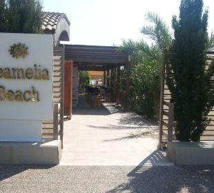 Eingang zum Hotelstrand Hotel Seamelia Beach Resort