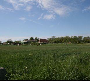 Ein Blick zum Ferienhof übers Feld Ferienhof Meislahn