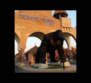 Top gepflegte Anlage Jungle Aqua Park