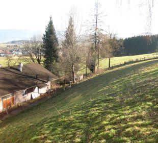 Ausblick vom Zirbenraum Hotel Winzer Wellness & Kuscheln