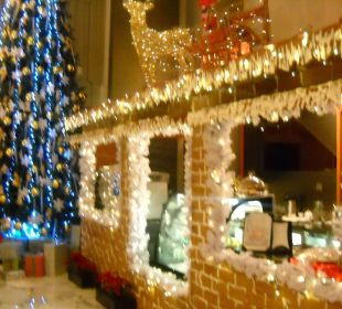 Weihnachtsschmuck Eingang Lobby mit Cafe Hotel Grand Millennium Al Wahda Abu Dhabi