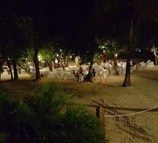 Jungle Restaurant  Dreams La Romana Resort & Spa