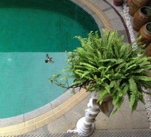 Swimming pool Ruean Thai Hotel