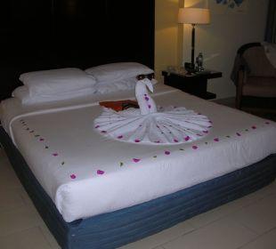 Plötzlicher Besucher Hotel Reef Oasis Blue Bay