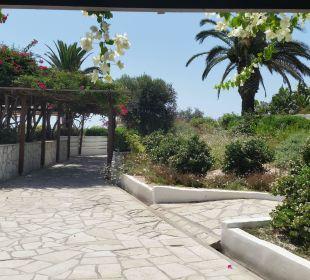 Weg zum Restaurant Hotel Nissi Beach Resort