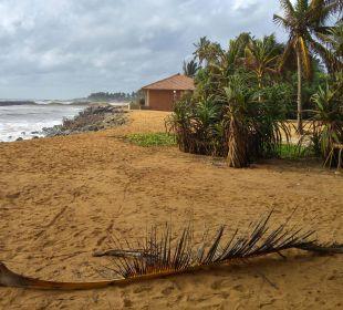 Schöner Strand, aber nicht zum Baden Hotel Ranweli Holiday Village