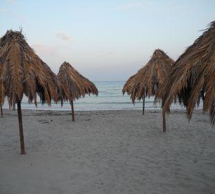 Hoteleigener Strand am Abend: menschenleer Hotel Residence Fenicia