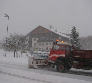 Fett Schnee in Obsteig Familien-Landhotel Stern