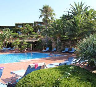 Pool mit vielen Palmen gesäumt ... Hotel Residence Fenicia