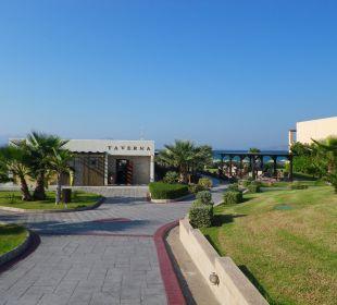 Die Taverne am Strand Hotel Horizon Beach Resort