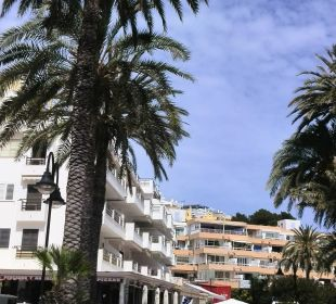 Schattige Sitzplätze Hotel Ibiza Playa