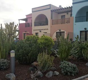Gepflegte Außenanlage Hotel Luz Del Mar