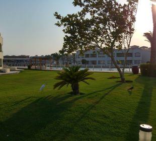 Herrlich Dana Beach Resort