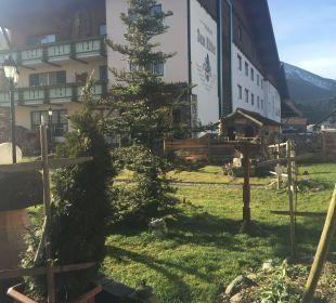 Garten mit gut besuchtem Vogelhaus Vital Hotel Zum Ritter