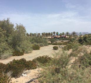 Blick vom Strandweg aus Dunas Suites&Villas Resort