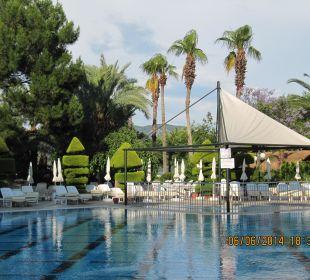 Pool Hotel Aqua