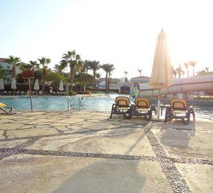 Pool direkt am Zimmer Hotel Reef Oasis Blue Bay