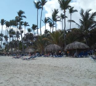 Breiter und sauberer Strand Occidental Grand Punta Cana Resort
