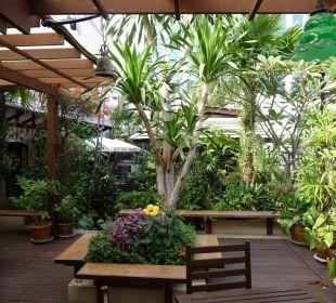 Kleiner Dachgarten-Dschungel Hotel Siam Heritage