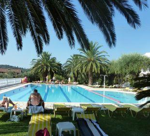 Pool mit schönen großen Palmen Hotel Paradise Corfu