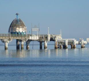Seebrücke Zinnowitz  vereist am 12.03.2013  Casa Familia