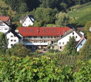 """Blick von den Weinbergen auf den """"Faxe"""" Faxe Schwarzwälder Hof Waldulm"""