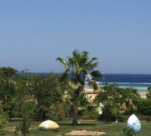 Blick vom Pool aufs Meer Three Corners Fayrouz Plaza Beach Resort