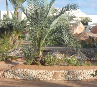 Liebevoll gestaltet SunConnect Djerba Aqua Resort
