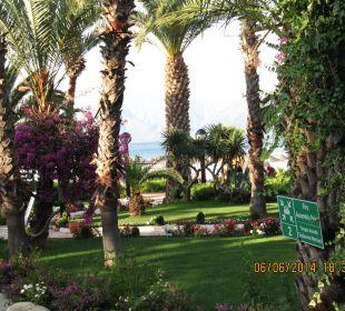 Gepflegter sauberer Garten Hotel Aqua