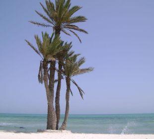 Plaża Hotel Sidi Slim