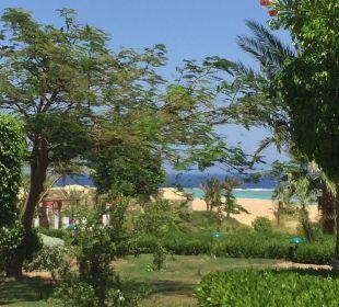 Wir hätten auch in der Karibik sein können!! Three Corners Fayrouz Plaza Beach Resort