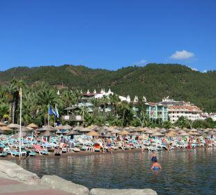 Strand mit Liegen, dahinter viel Grün Hotel Aqua