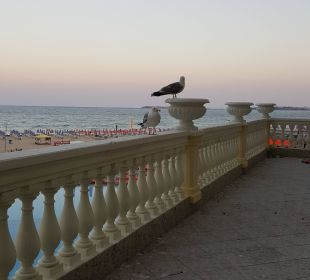 Meer- und Pool-Ausblick Victoria Palace Hotel & Spa