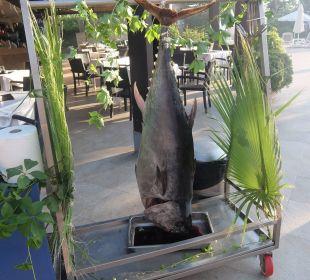 Galaabend Thunfisch Hotel Seamelia Beach Resort