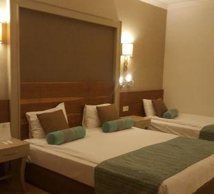 Zimmereinrichtung delux  Hotel Side Crown Palace