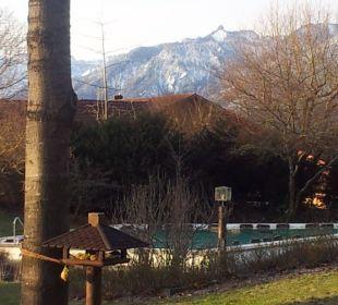 Pool und Berge Hotel Alpenhof Murnau