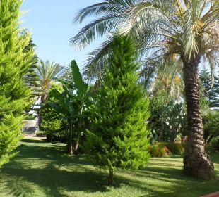 Der schöne gepflegte Garten Hotel Side Sun
