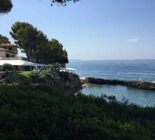 Ausblick vom Pool Hotel Bendinat