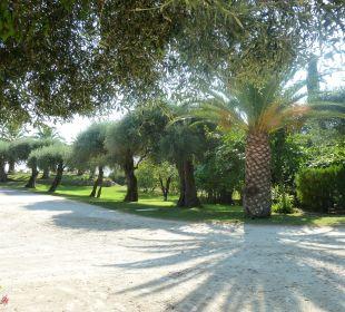 Gartenanlage vor dem Haus Hotel Paradise Corfu