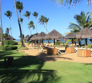 Liegen vor der Hangkante zum Strand IBEROSTAR Hotel Bahia