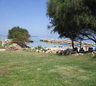 Blick auf den Strand Hotel Mimosa Beach