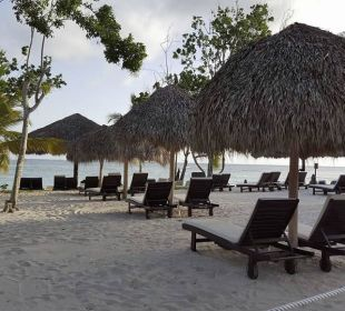 Strandabschnitt Preferred Club Adults Only Dreams La Romana Resort & Spa