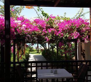 Blick vom Restaurant Hotel Nissi Beach Resort